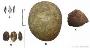 Fig. OA2463_4 modif